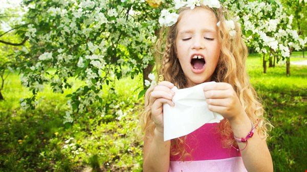tips mot pollenallergi
